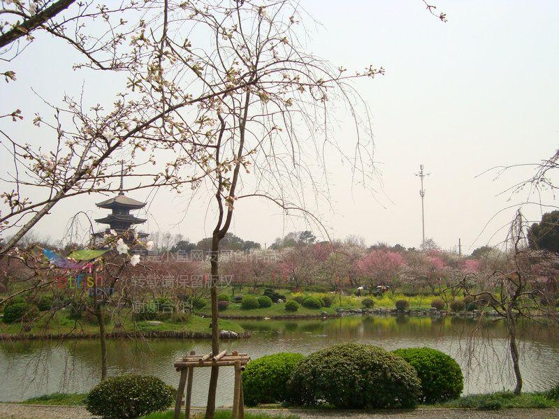 磨山风景区