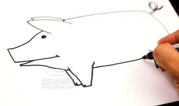 儿童手绘小猪简笔画内容图片展示