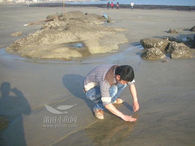 美丽丹头石城别墅沙滩天台风水浅水湾图片
