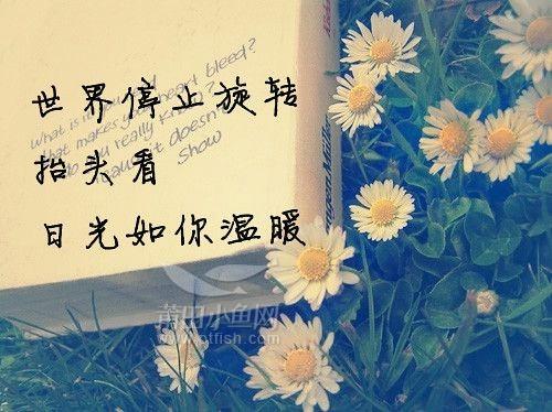 写下爱的三行情书 24K黄金玫瑰助你520告白