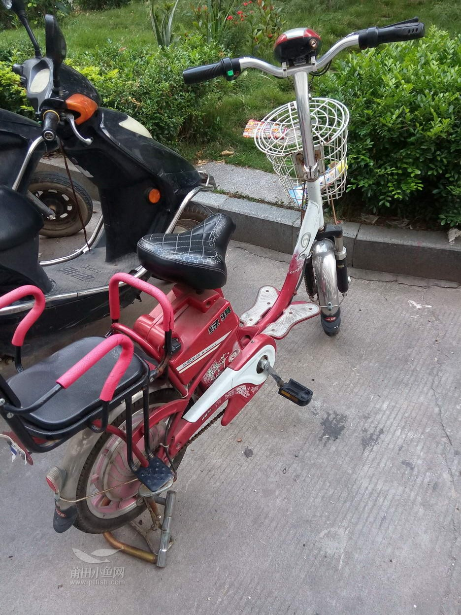 绿骐电动车36V带脚踏图片