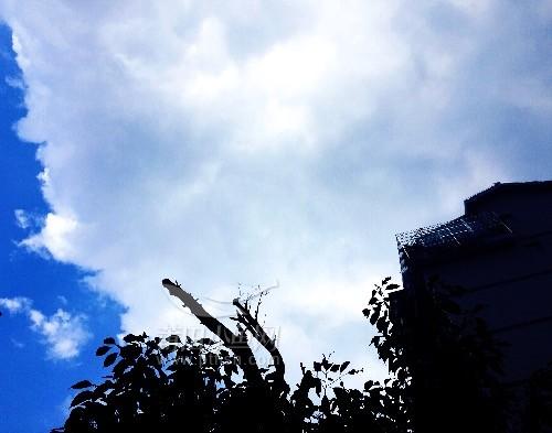 大莆田好天气