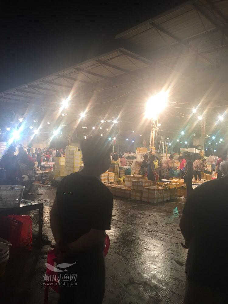 正在逛海鲜批发市场 - 纯莆天地 - 莆田小鱼网 -  by