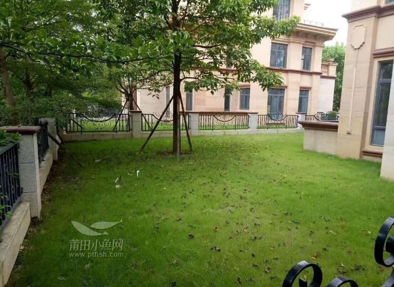 紫霄风景区,安特紫荆城,洋房别墅,蓝天白云,青山绿水