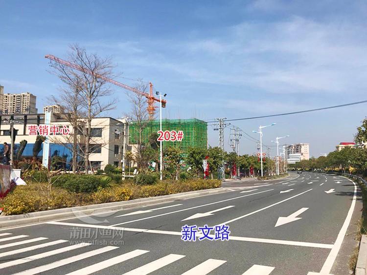 碧桂园·天澜 周边主要道路