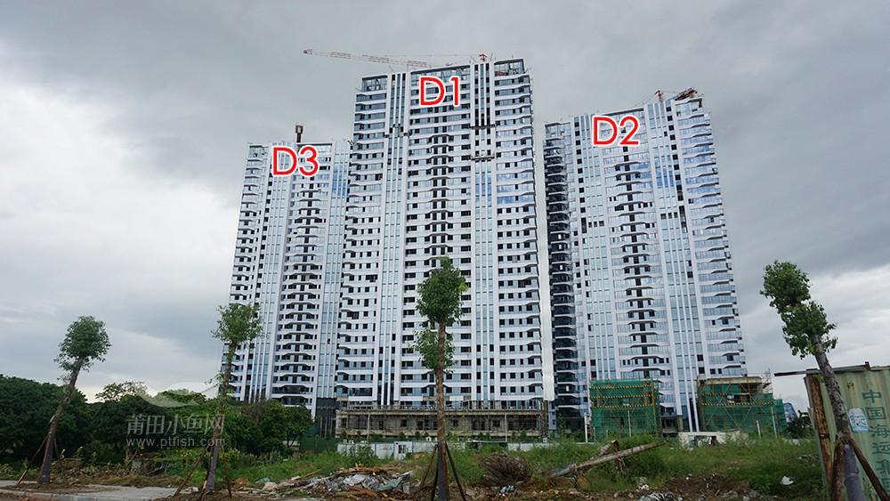 建工•绶溪里 高层D1-D3#工程进度图