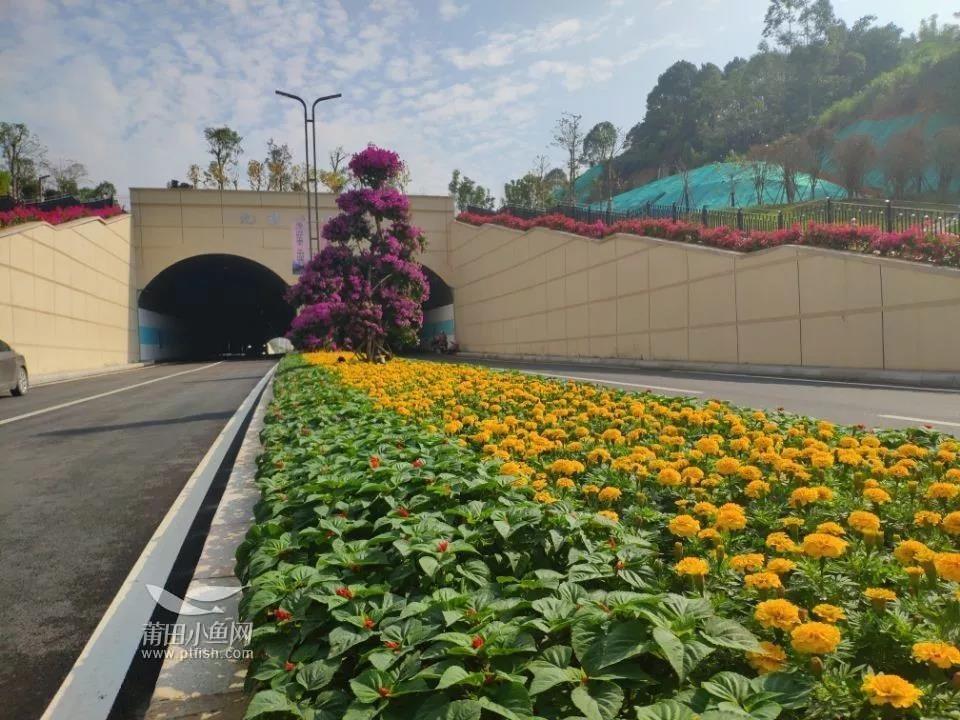 九龙山隧道