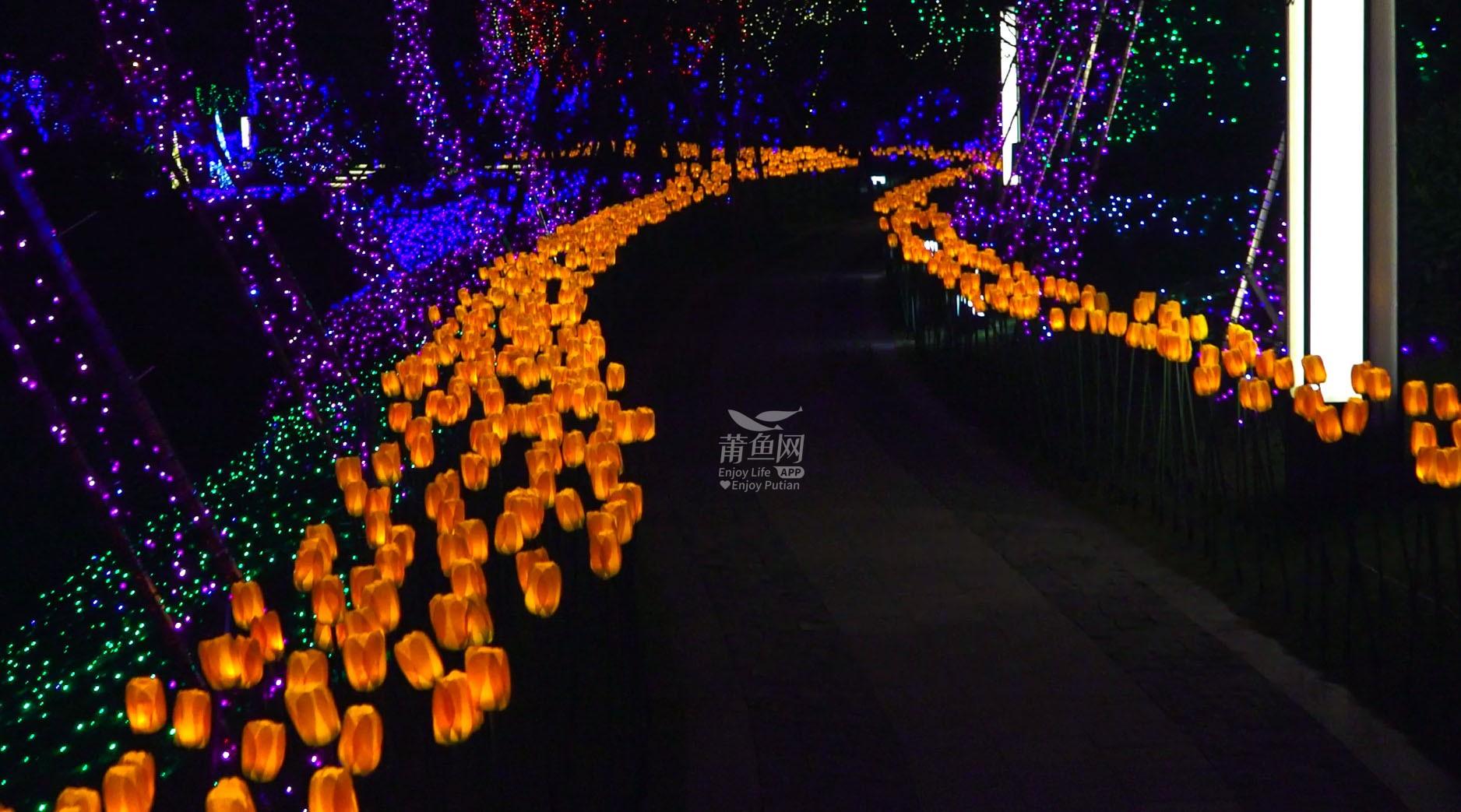正荣白棠云麓湖畔灯光展!